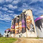 Horsham silo art